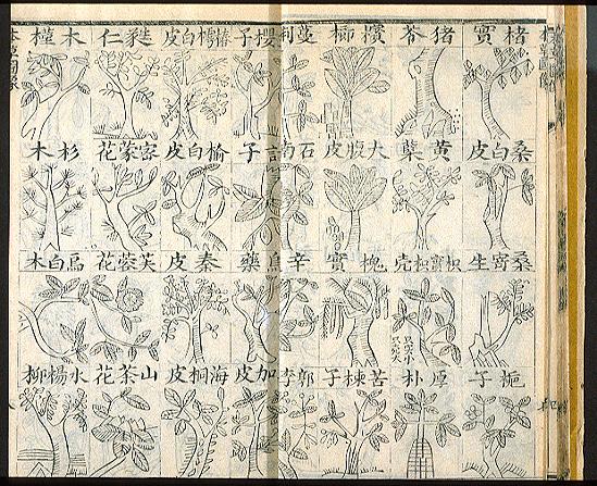 Shen Nung Pen Ts´ao Ching