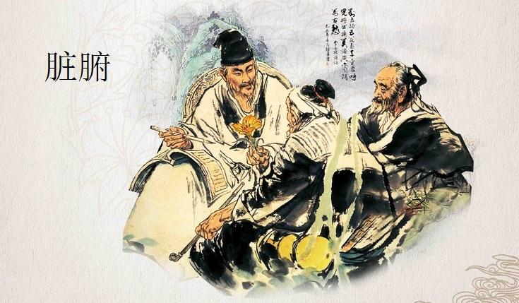 zang fu medicina china