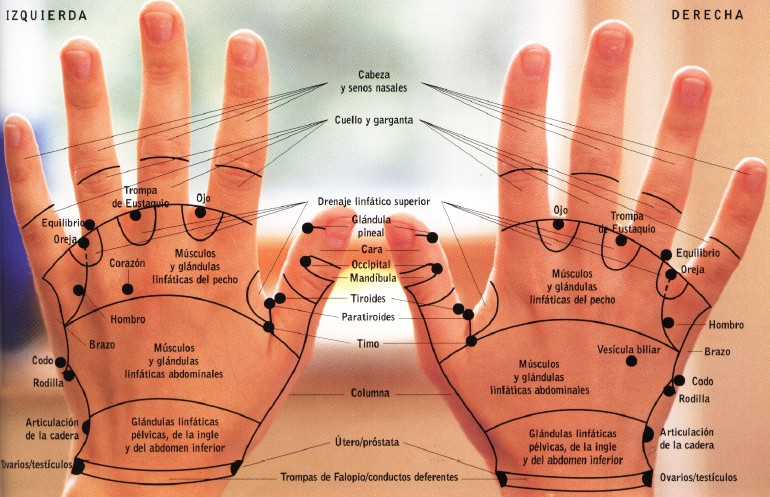puntos y zonas dorso manos