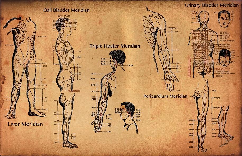 meridianos medicina china