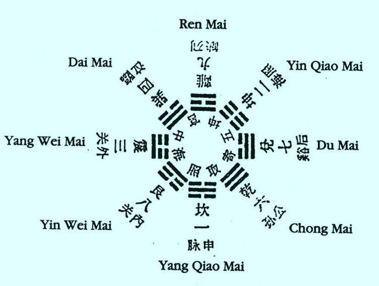 ocho vasos maravillosos en Medicina China